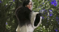 Summary In Storybrooke, Cruella takes matters into her own hands concerning the Author and her happy ending. (This seems to be a trend with these villains, doesn't it?) In a […]