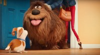 Two thousand sixteen is going to be an exciting year for Illumination Entertainment. It will not only be the first time ever that the studio will release two feature films in one year, […]