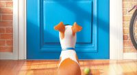 If you live in or around the Scottsdale, AZ area, you could win tickets to see the Illumination Entertainment's new animated film The Secret Life of Pets. We have a total of […]