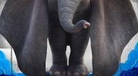 With the holidays complete, Disney looks forward to 2019, and the studio's first big release of the year,Dumbo, is debuting on March 29th. Today, Disney revealed the character posters for […]