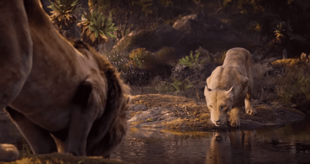 new  u0026 39 lion king u0026 39  trailer dazzles with visuals  wows with