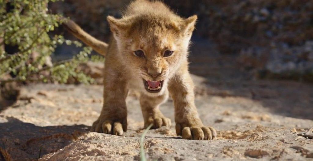 2019-Lion-King-Simba-Cub